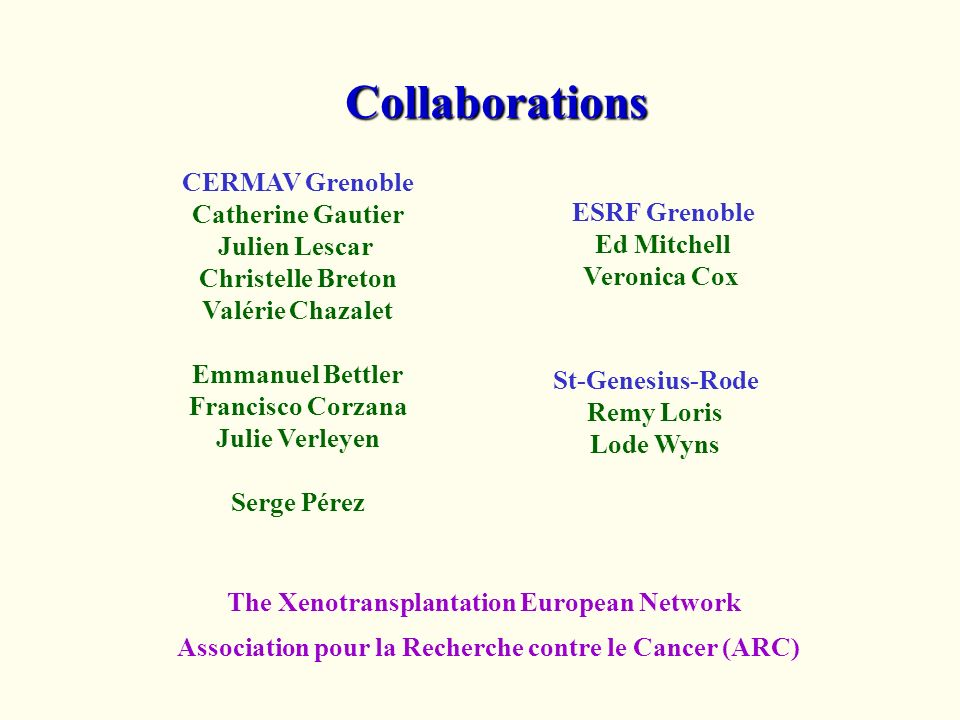 Collaborations The Xenotransplantation European Network CERMAV Grenoble Catherine Gautier Julien Lescar Christelle Breton Valérie Chazalet Emmanuel Be