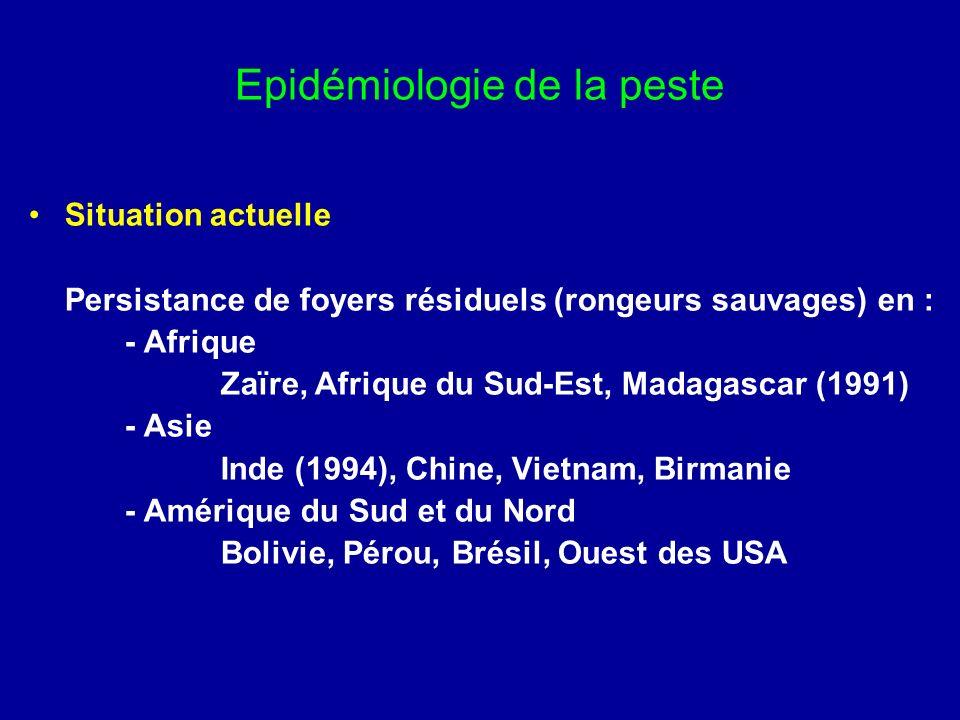 Traitement de la peste Maladie à déclaration obligatoire Traitement curatif - streptomycine IM (500mg/12H) 10 JOURS - tétracyclines VO (0,5g/6H), sulfamides -Chloramphénicol / thiamphénicol si atteinte neuro-méningée (4 inj IV/J : 25 puis 50 mg/kg, puis VO) Traitement prophylactique (des sujets contacts) - sulfamides(sulfadoxine ou sulfathiazol) : 6 JOURS Mesures sanitaires associées - isolement des patients (peste pulmonaire) - limitation des déplacements - désinsectisation et dératisation des habitations