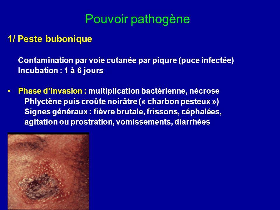 Pouvoir pathogène de Y.enterocolitica et de Y.pseudotuberculosis 1/ Entérites (+ fréquente avec Y.