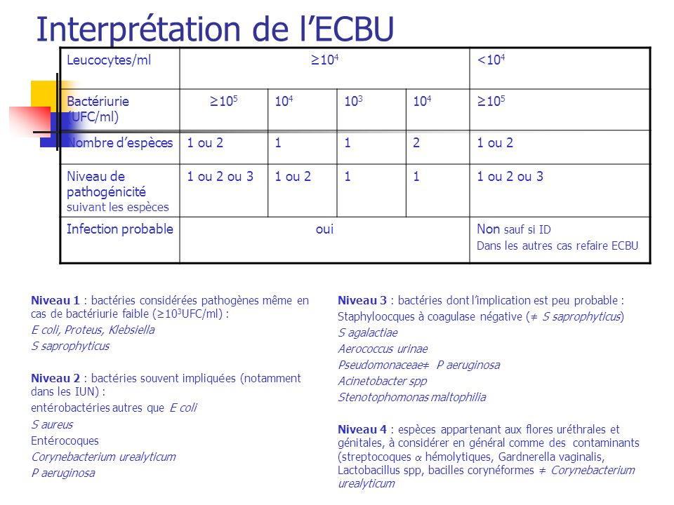 Interprétation de lECBU Leucocytes/ml10 4 <10 4 Bactériurie (UFC/ml) 10 5 10 4 10 3 10 4 10 5 Nombre despèces1 ou 2112 Niveau de pathogénicité suivant