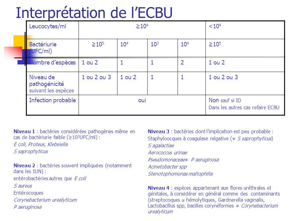 Prostatite Diagnostic : Pas de massage prostatique PSA nest pas un critère diagnostic ECBU (seuil de bactériurie : 10 4 UFC/ml) Hémocultures Echographie par voie sus pubienne (pas déchographie par voie rectale en phase aiguë)