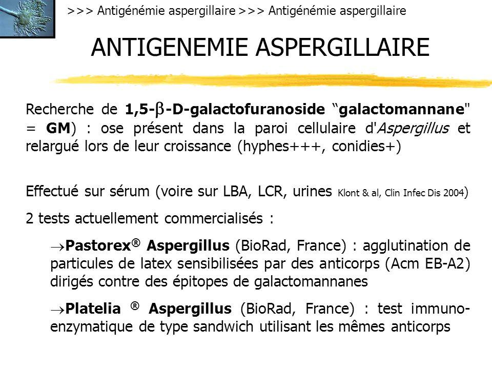 >>> Antigénémie aspergillaire ANTIGENEMIE ASPERGILLAIRE Recherche de 1,5- -D-galactofuranoside galactomannane = GM) : ose présent dans la paroi cellulaire d Aspergillus et relargué lors de leur croissance (hyphes+++, conidies+) Effectué sur sérum (voire sur LBA, LCR, urines Klont & al, Clin Infec Dis 2004 ) 2 tests actuellement commercialisés : Pastorex ® Aspergillus (BioRad, France) : agglutination de particules de latex sensibilisées par des anticorps (Acm EB-A2) dirigés contre des épitopes de galactomannanes Platelia ® Aspergillus (BioRad, France) : test immuno- enzymatique de type sandwich utilisant les mêmes anticorps