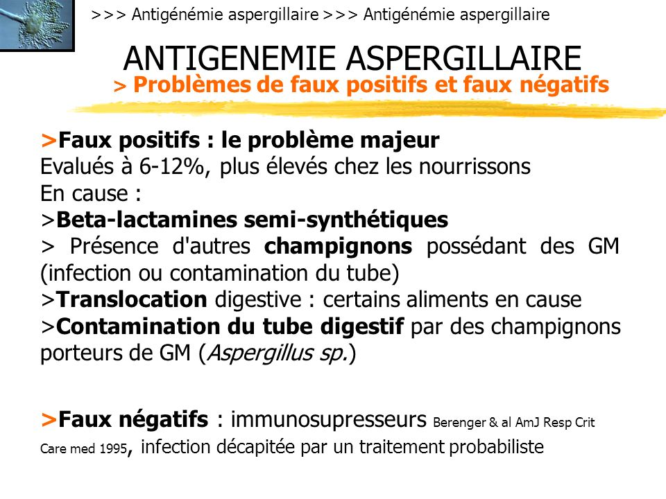 >>> Antigénémie aspergillaire ANTIGENEMIE ASPERGILLAIRE > Problèmes de faux positifs et faux négatifs >Faux positifs : le problème majeur Evalués à 6-12%, plus élevés chez les nourrissons En cause : >Beta-lactamines semi-synthétiques > Présence d autres champignons possédant des GM (infection ou contamination du tube) >Translocation digestive : certains aliments en cause >Contamination du tube digestif par des champignons porteurs de GM (Aspergillus sp.) >Faux négatifs : immunosupresseurs Berenger & al AmJ Resp Crit Care med 1995, infection décapitée par un traitement probabiliste
