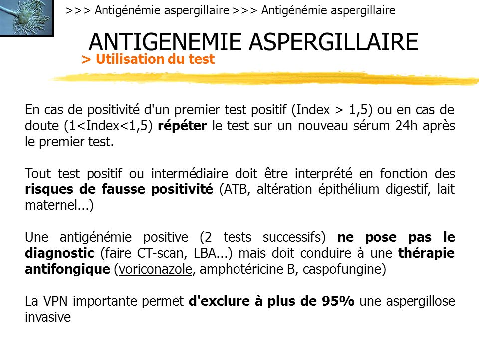 >>> Antigénémie aspergillaire ANTIGENEMIE ASPERGILLAIRE > Utilisation du test En cas de positivité d un premier test positif (Index > 1,5) ou en cas de doute (1<Index<1,5) répéter le test sur un nouveau sérum 24h après le premier test.