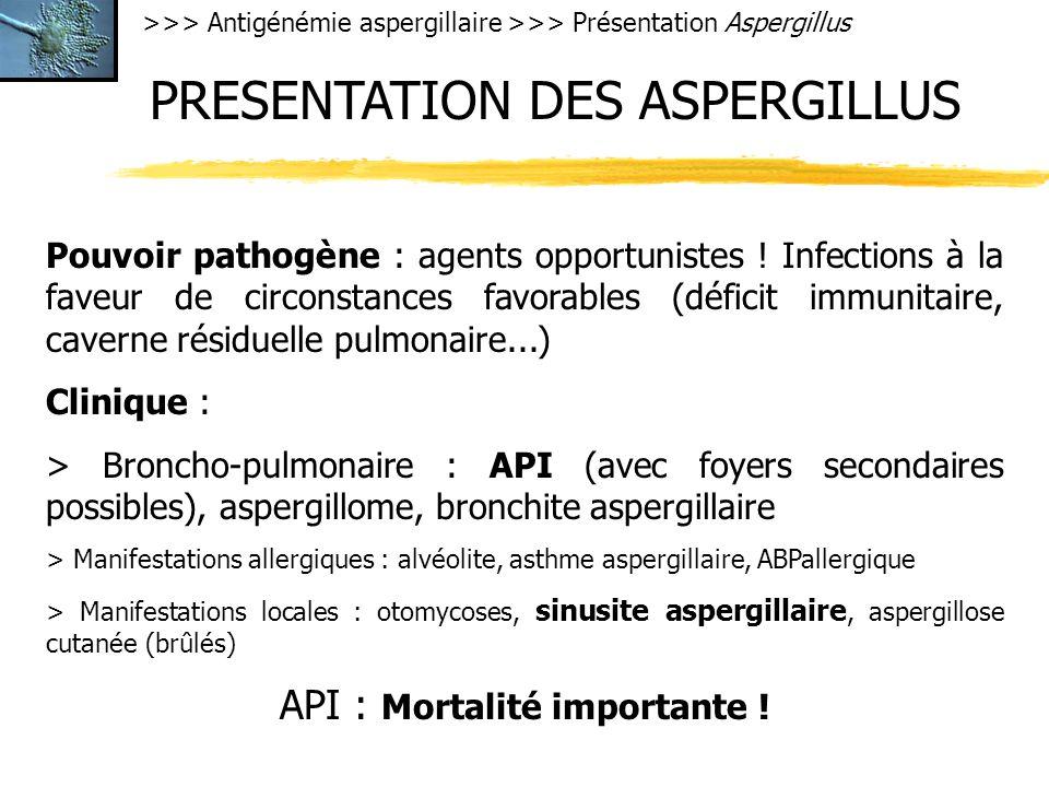 >>> Antigénémie aspergillaire >>> Présentation Aspergillus PRESENTATION DES ASPERGILLUS Pouvoir pathogène : agents opportunistes ! Infections à la fav