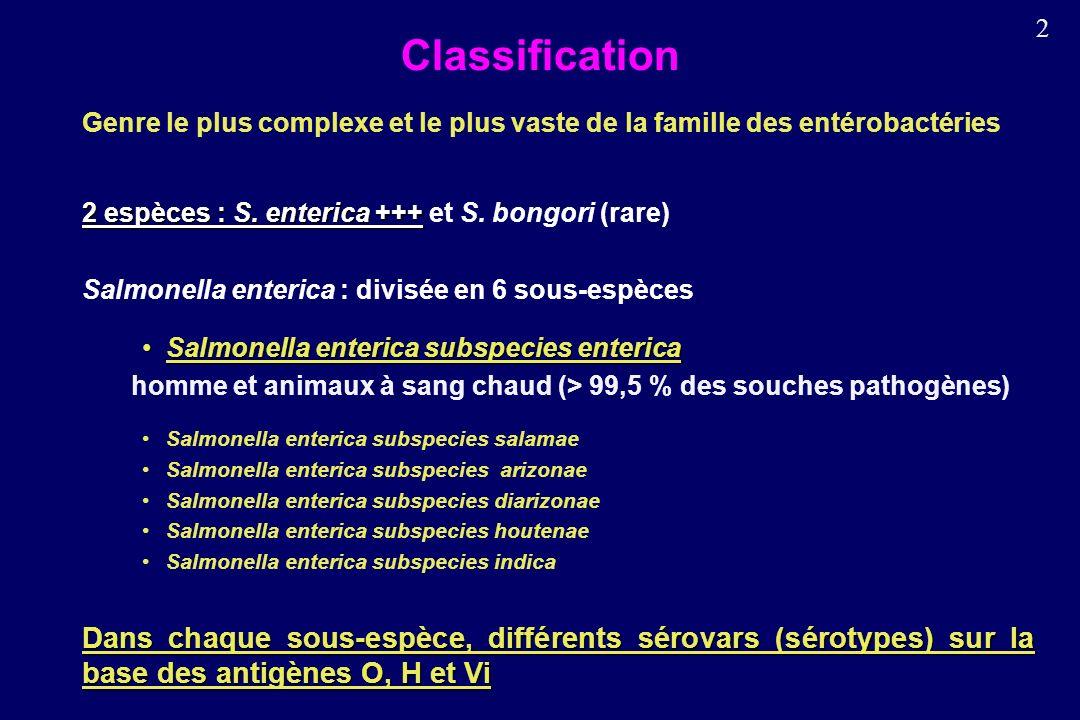 2 Classification Genre le plus complexe et le plus vaste de la famille des entérobactéries 2 espèces : S.