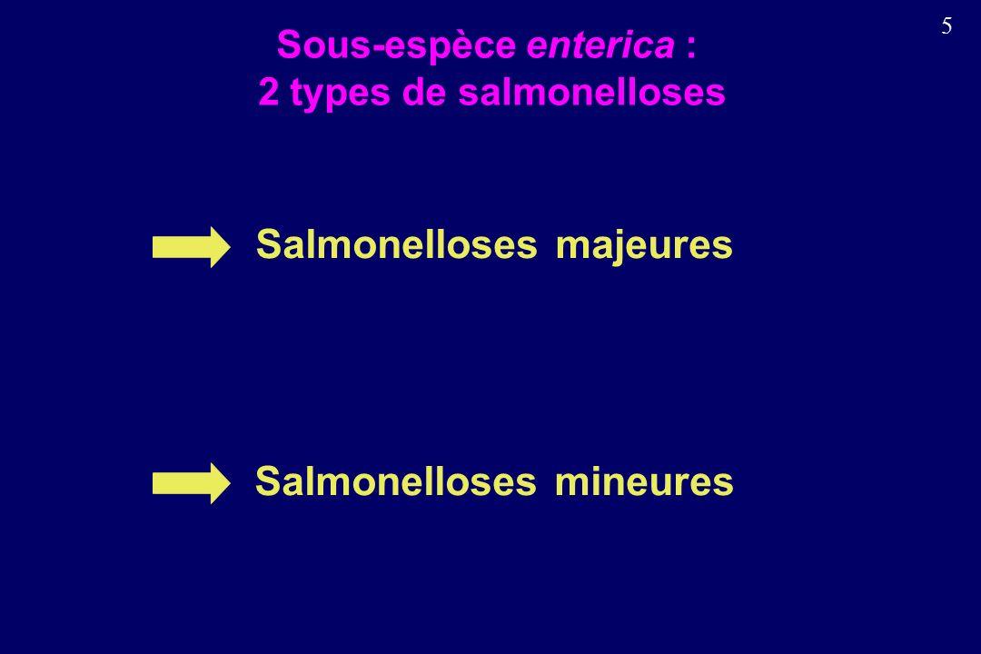 5 Sous-espèce enterica : 2 types de salmonelloses Salmonelloses majeures Salmonelloses mineures