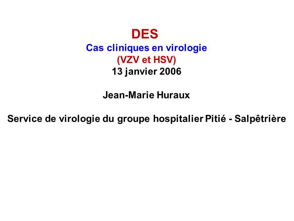 DES Cas cliniques en virologie (VZV et HSV) 13 janvier 2006 Jean-Marie Huraux Service de virologie du groupe hospitalier Pitié - Salpêtrière