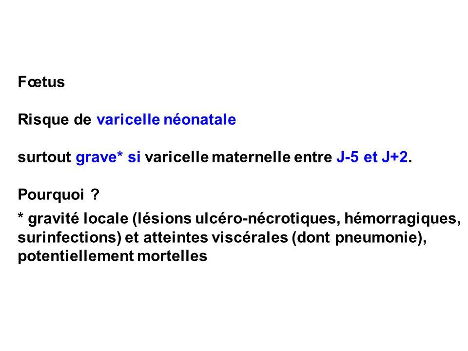 Fœtus Risque de varicelle néonatale surtout grave* si varicelle maternelle entre J-5 et J+2. Pourquoi ? * gravité locale (lésions ulcéro-nécrotiques,