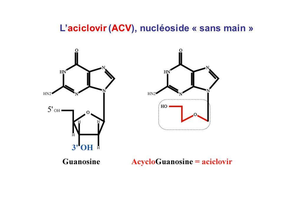 Laciclovir (ACV), nucléoside « sans main »