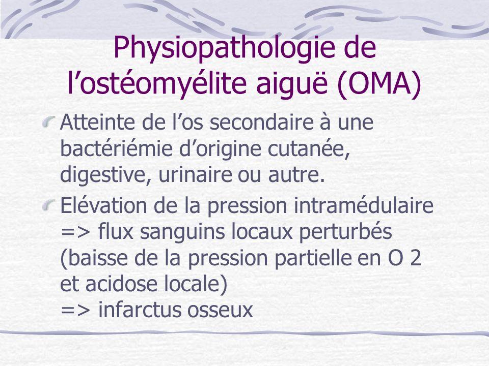 Physiopathologie de lostéomyélite aiguë (OMA) Atteinte de los secondaire à une bactériémie dorigine cutanée, digestive, urinaire ou autre. Elévation d