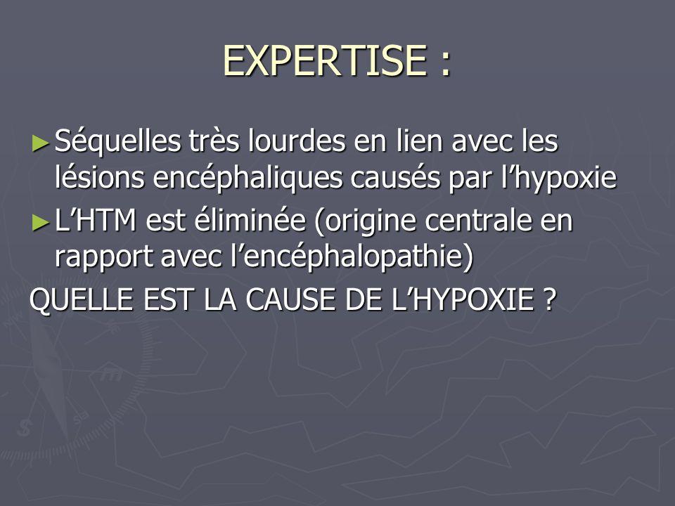 EXPERTISE : Séquelles très lourdes en lien avec les lésions encéphaliques causés par lhypoxie Séquelles très lourdes en lien avec les lésions encéphal