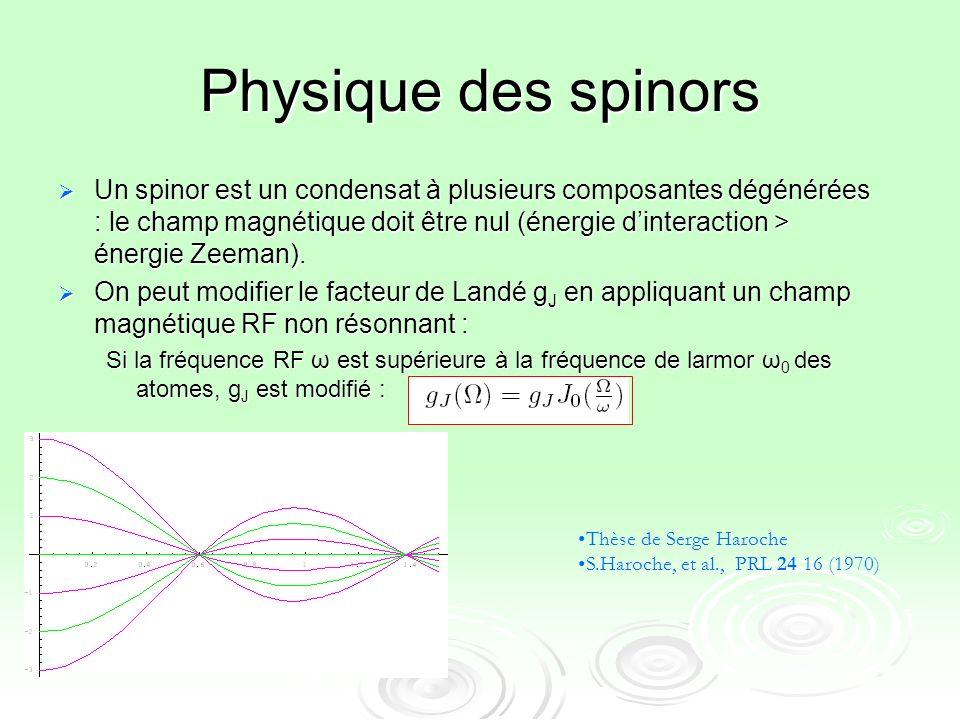 Physique des spinors Un spinor est un condensat à plusieurs composantes dégénérées : le champ magnétique doit être nul (énergie dinteraction > énergie