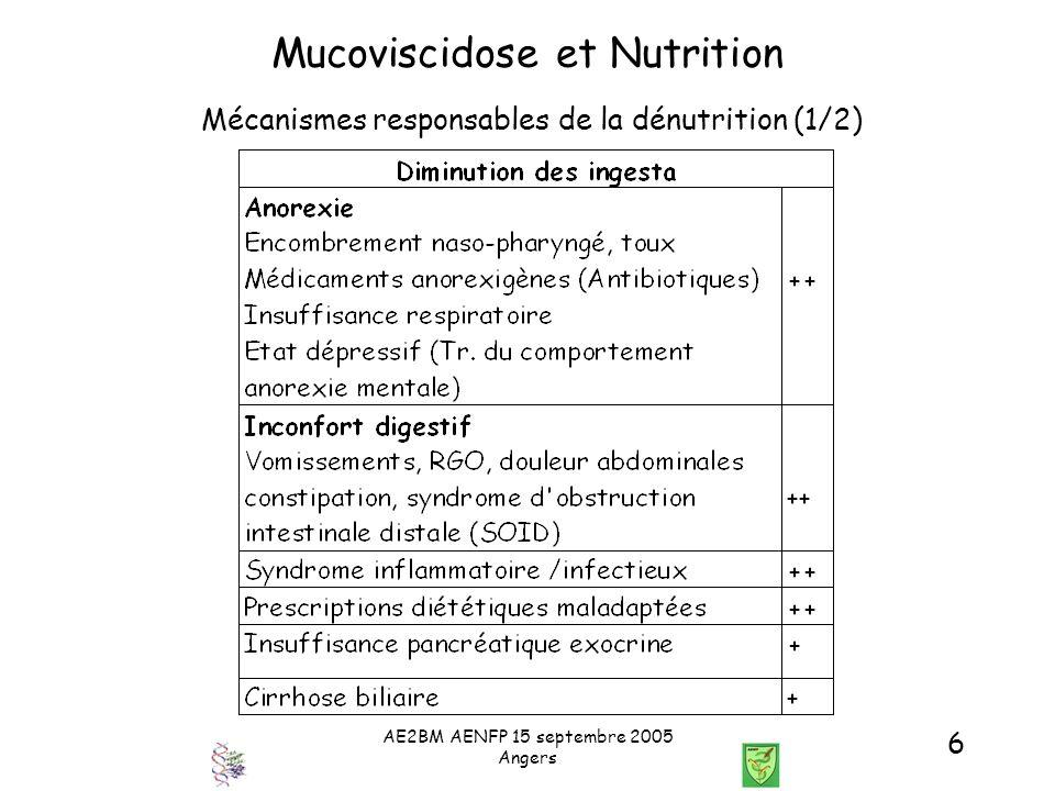 AE2BM AENFP 15 septembre 2005 Angers 17 Mucoviscidose et Nutrition Comment maintenir un état nutritionnel optimal chez l enfant ou l adulte.