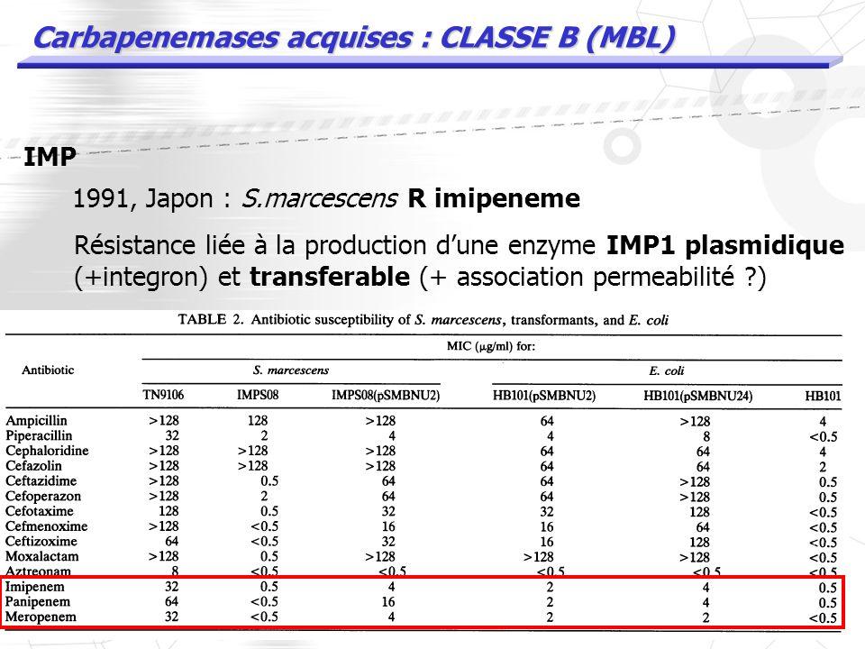 Carbapenemases acquises : CLASSE B (MBL) MBL : carbapenemases acquises les plus nombreuses épidémies dinfections nosocomiales IMP VIM