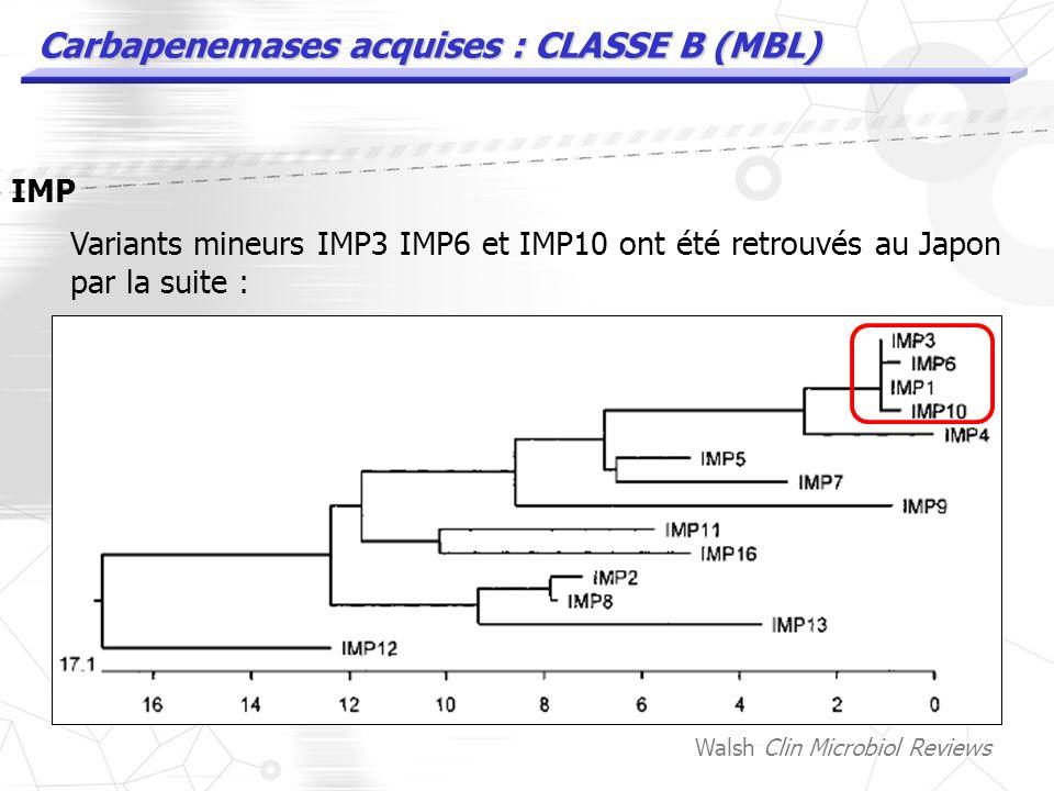 Carbapenemases acquises : CLASSE B (MBL) IMP 1991, Japon : P.aeruginosa avec bla IMP1 plasmidique (isolée en 88) bla IMP1 sur S.marcescens en 91 et 93