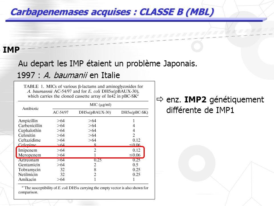 Carbapenemases acquises : CLASSE B (MBL) IMP Variants mineurs IMP3 IMP6 et IMP10 ont été retrouvés au Japon par la suite : Walsh Clin Microbiol Review