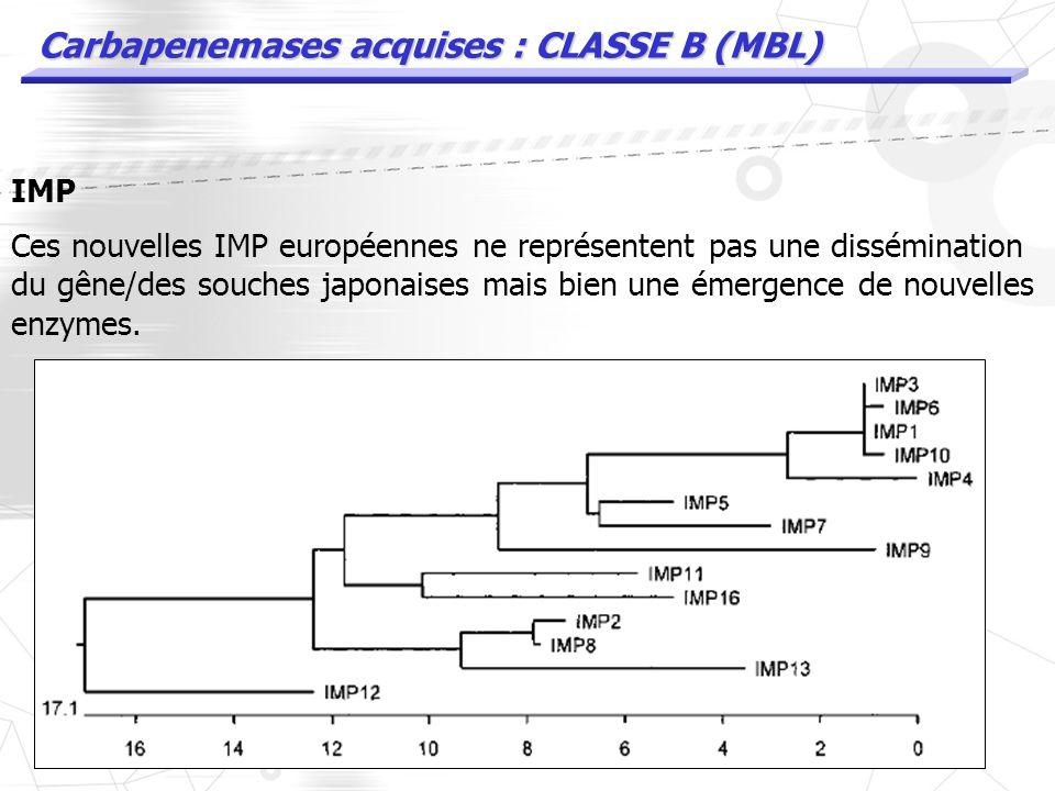 Carbapenemases acquises : CLASSE B (MBL) IMP Au depart les IMP étaient un problème Japonais. 1997 : A. baumanii IMP2 en Italie 1999 : A. baumanii IMP1