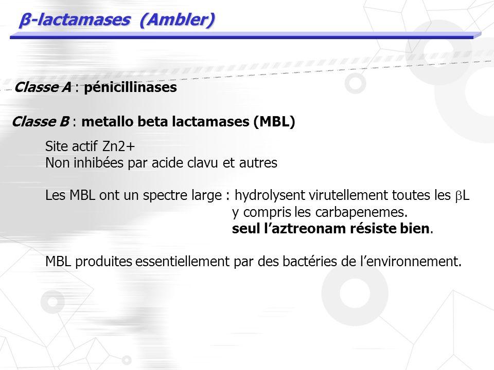 β-lactamases (Ambler) Classe A : pénicillinases Sérine protéases inhibées par lacide clav, tazo etc …