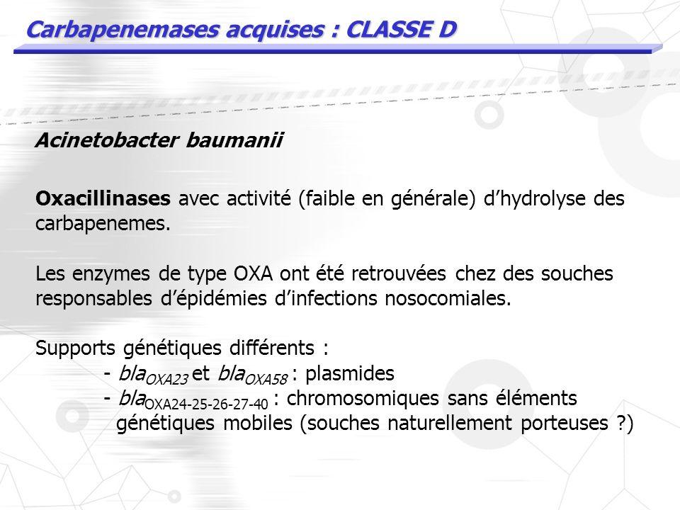 Carbapenemases acquises : CLASSE B (MBL) VIM Walsh et al. Metallo betalactamases the quiet before the storm ? Clin Microbiol Reviews