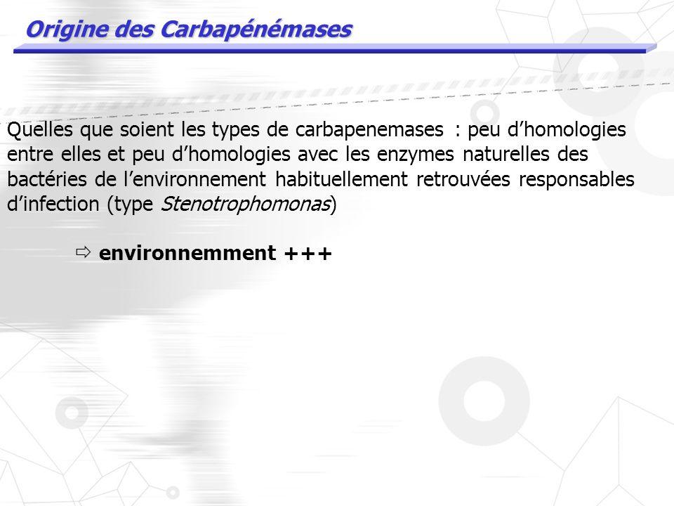 Carbapenemases acquises : CLASSE D Acinetobacter baumanii Oxacillinases avec activité (faible en générale) dhydrolyse des carbapenemes. Les enzymes de