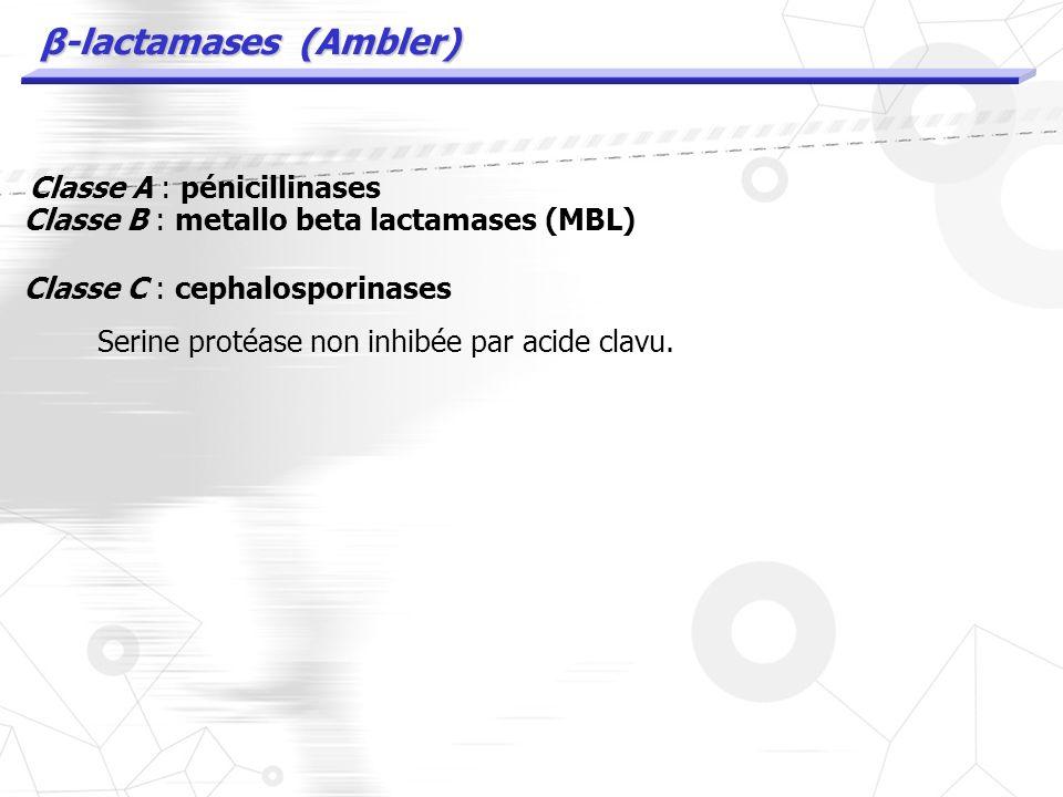 β-lactamases (Ambler) Classe A : pénicillinases Classe B : metallo beta lactamases (MBL) Site actif Zn2+ Non inhibées par acide clavu et autres Les MB