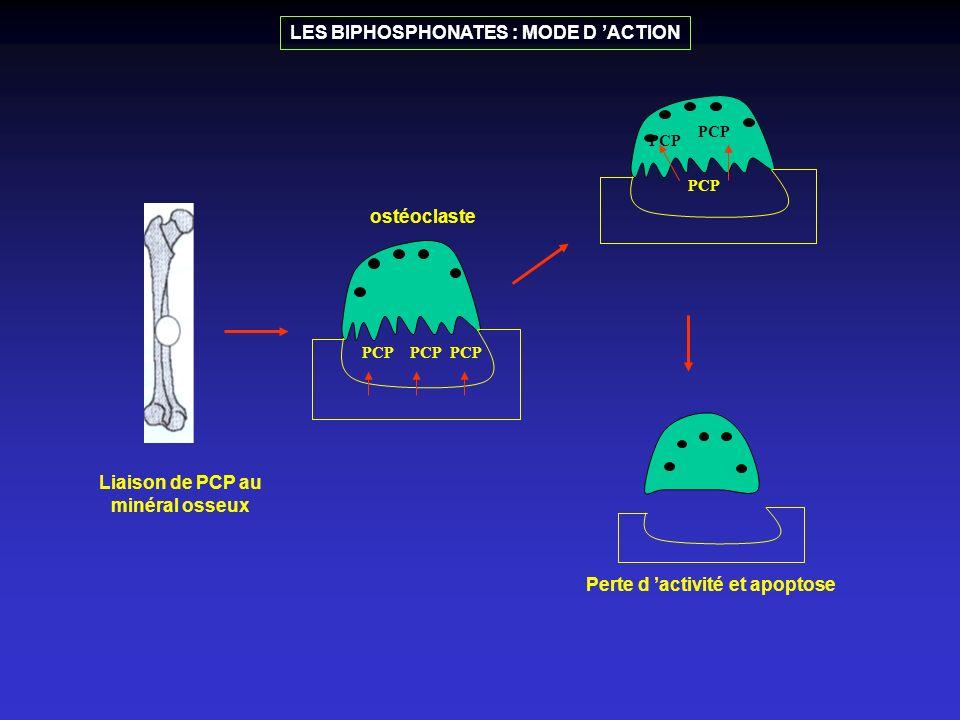 PCP Liaison de PCP au minéral osseux ostéoclaste PCP Perte d activité et apoptose LES BIPHOSPHONATES : MODE D ACTION