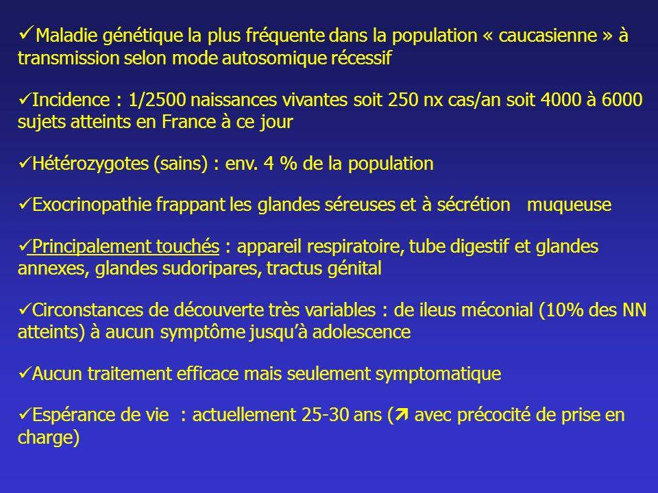 Gène CF (250 kb): - Localisé sur le chromosome 7 en 7q31 - Code pour la protéine CFTR (Cystic Fibrosis Conductance Regulator : régulateur transmembranaire dune conductance ) - Plus de 1000 modifications identifiées sur ce gène Protéine CFTR (1480 aa) : - Rôle de canal pour lion chlorure dans les cellules épithéliales - Autres rôles