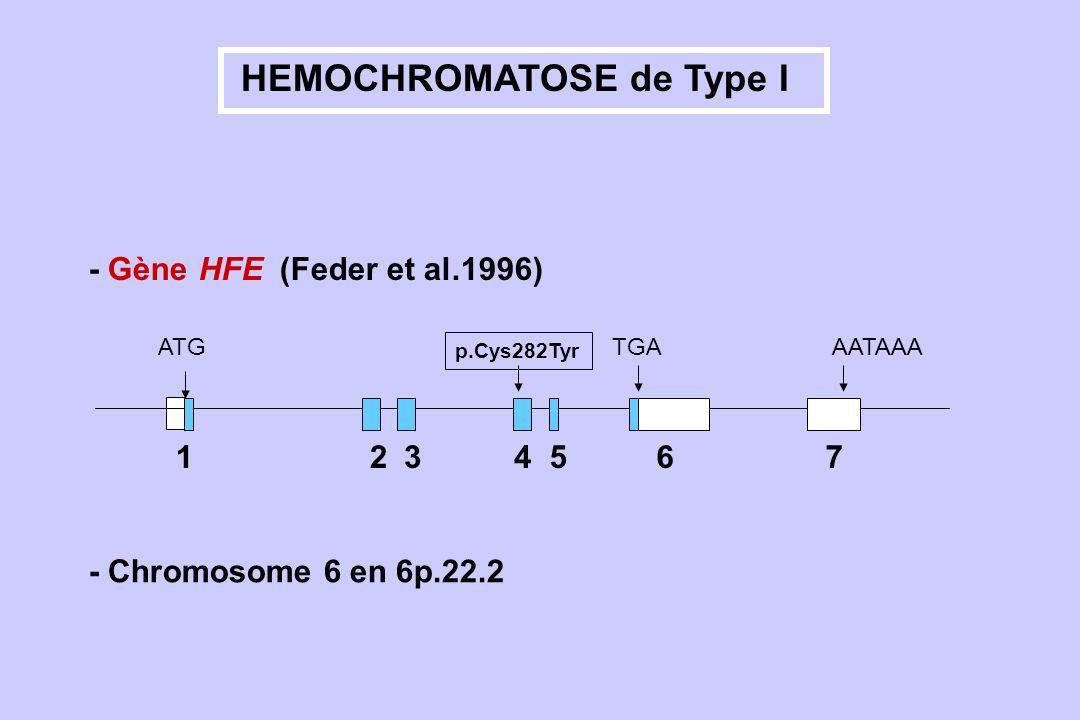 HEMOCHROMATOSE de Type I 3 146572 ATG p.Cys282Tyr TGAAATAAA - Gène HFE (Feder et al.1996) - Chromosome 6 en 6p.22.2