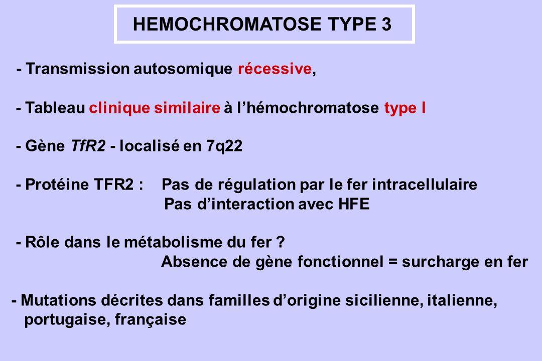 HEMOCHROMATOSE TYPE 3 - Transmission autosomique récessive, - Tableau clinique similaire à lhémochromatose type I - Gène TfR2 - localisé en 7q22 - Pro