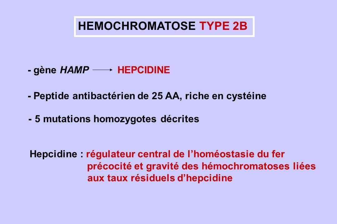HEMOCHROMATOSE TYPE 2B - gène HAMP HEPCIDINE Hepcidine : régulateur central de lhoméostasie du fer précocité et gravité des hémochromatoses liées aux