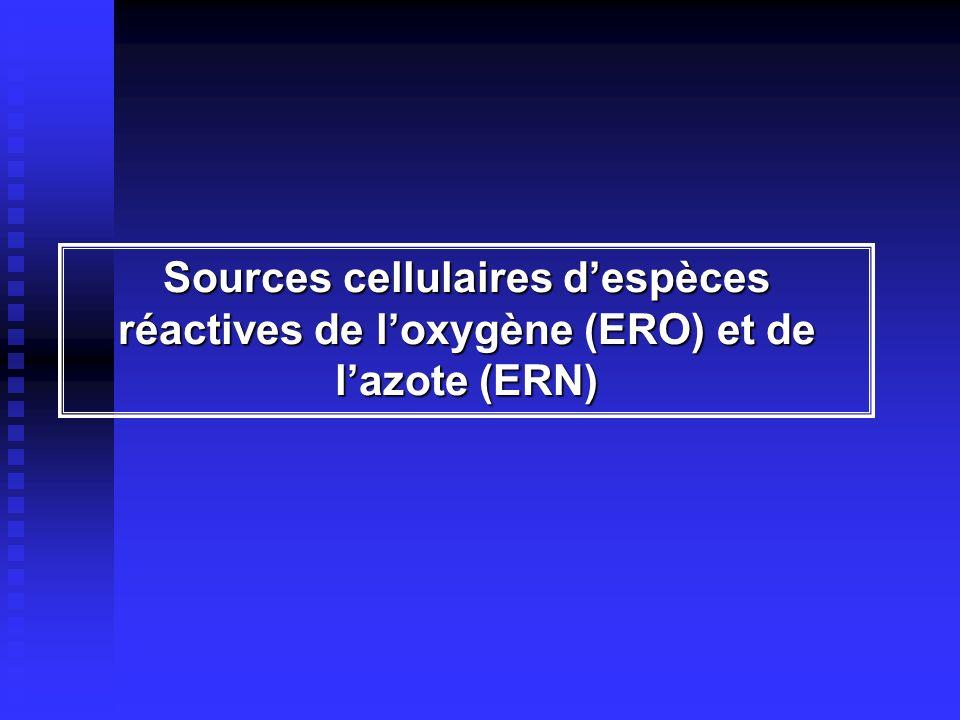 Sources cellulaires dERO et dERN NADPH oxydase Xanthine oxydase Chaîne respiratoire mitochondriale O2O2 O 2 - ONOO - NO Cyt.