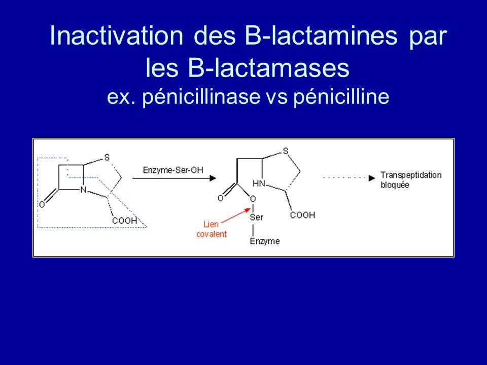 Inactivation des B-lactamines par les B-lactamases ex. pénicillinase vs pénicilline