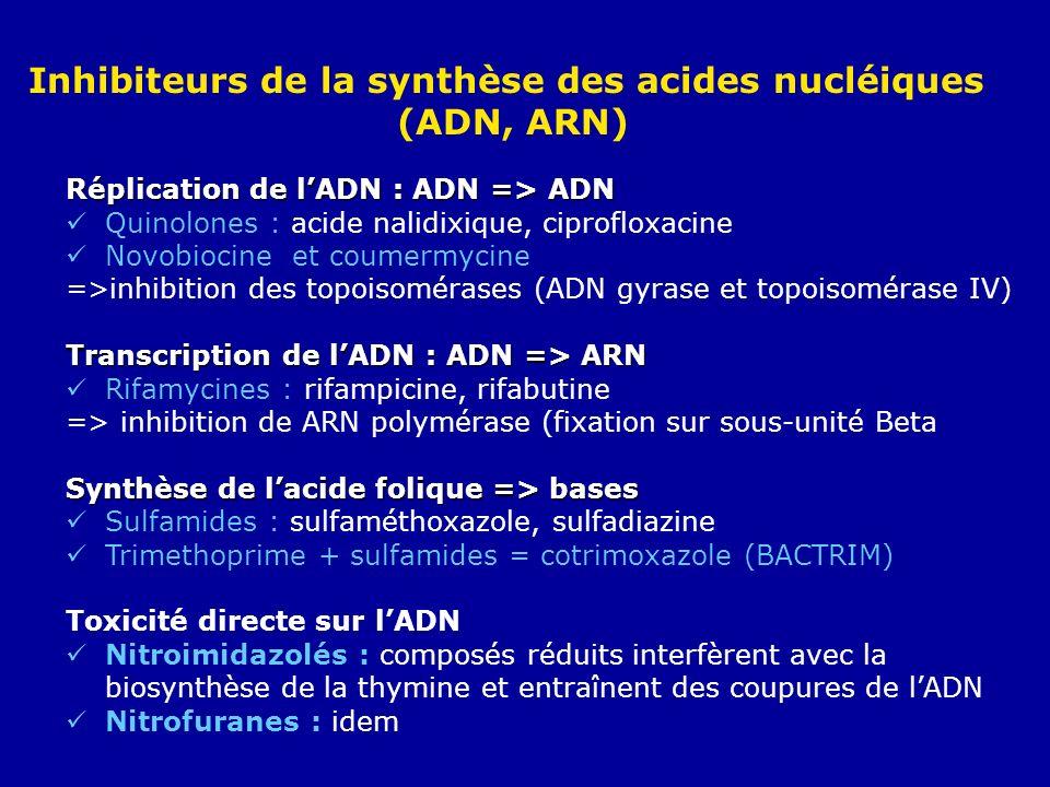 Réplication de lADN : ADN => ADN Quinolones : acide nalidixique, ciprofloxacine Novobiocine et coumermycine =>inhibition des topoisomérases (ADN gyras