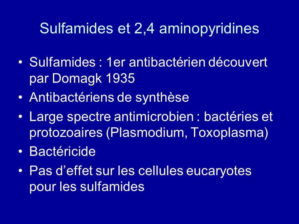 Sulfamides et 2,4 aminopyridines Sulfamides : 1er antibactérien découvert par Domagk 1935 Antibactériens de synthèse Large spectre antimicrobien : bac