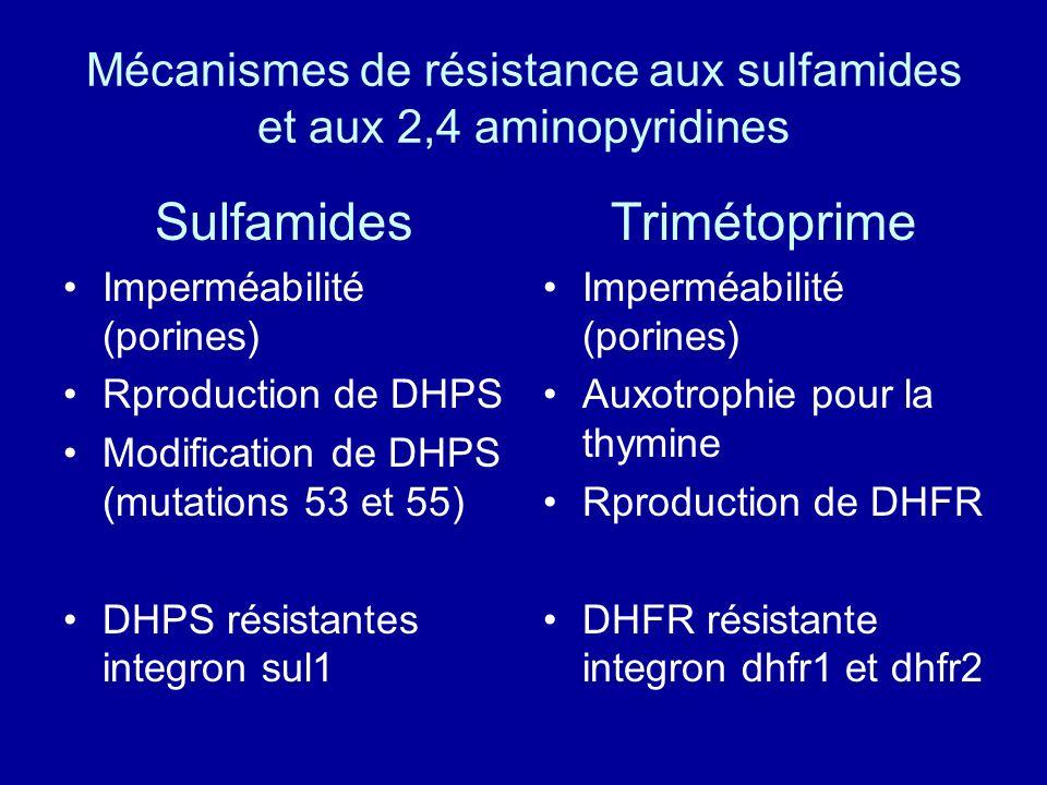 Sulfamides Imperméabilité (porines) Rproduction de DHPS Modification de DHPS (mutations 53 et 55) DHPS résistantes integron sul1 Trimétoprime Imperméa