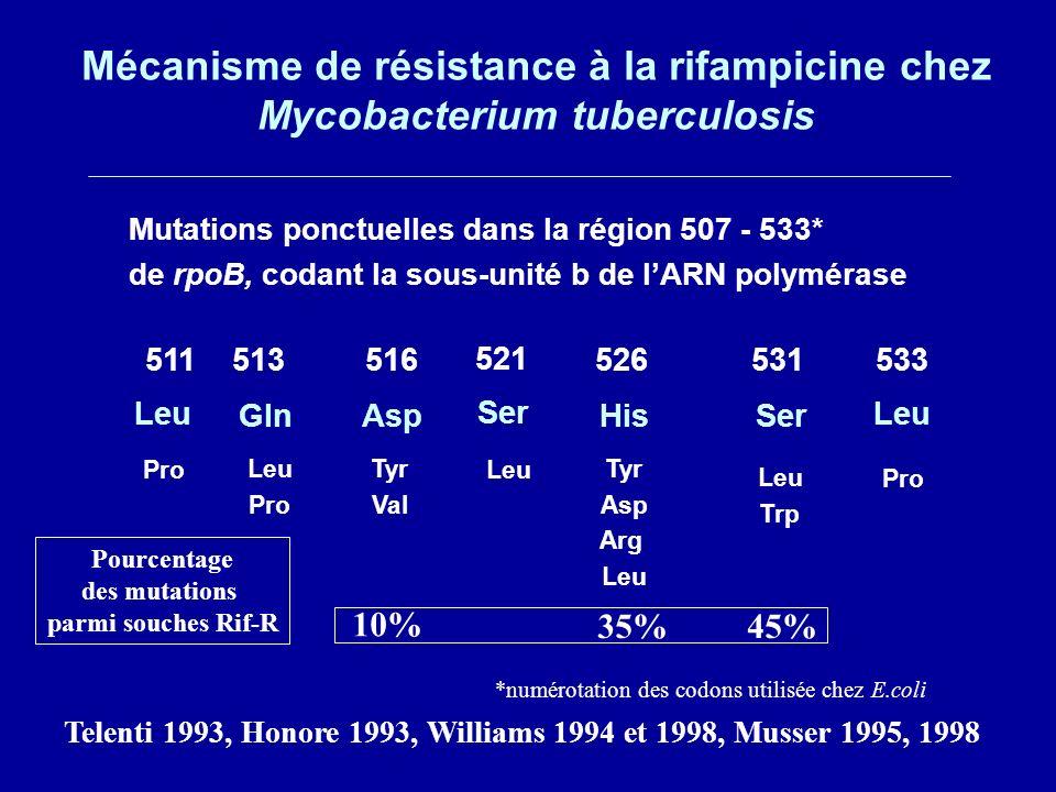 Mécanisme de résistance à la rifampicine chez Mycobacterium tuberculosis Mutations ponctuelles dans la région 507 - 533* de rpoB, codant la sous-unité