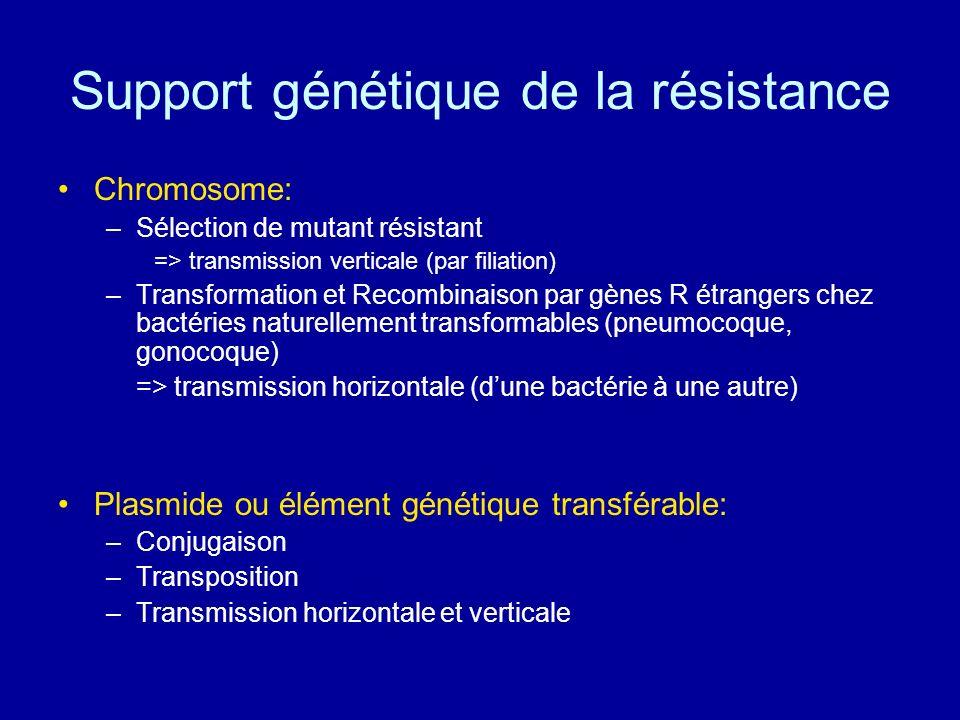 Support génétique de la résistance Chromosome: –Sélection de mutant résistant => transmission verticale (par filiation) –Transformation et Recombinais