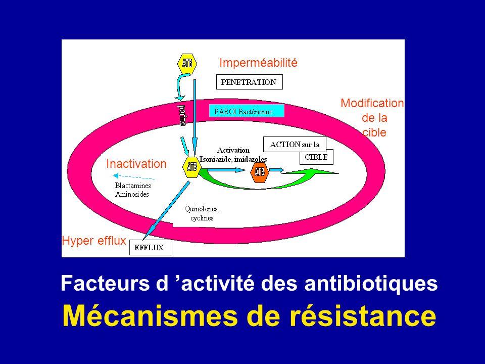 Mode daction des antibiotiques PAROI BACTERIENNE Porine (OMP) B-lactamines Glycopeptides Fosfomycine Quinolones Rifampicine Nitrofuranes Nitroimidazolés Aminosides Cyclines Macrolides Phénicolés Sulfamides Trimetoprime acide folique