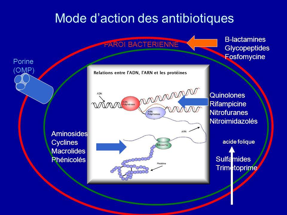 Mode daction des antibiotiques PAROI BACTERIENNE Porine (OMP) B-lactamines Glycopeptides Fosfomycine Quinolones Rifampicine Nitrofuranes Nitroimidazol