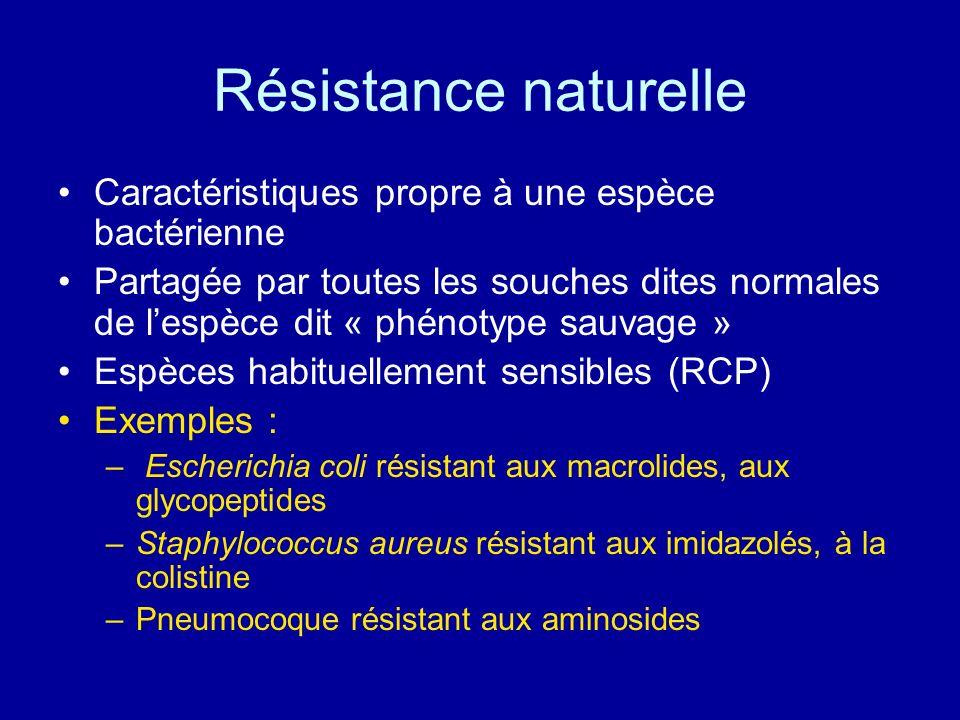 Résistance acquise Caractéristiques propre à certaines souches au sein dune même espèce bactérienne « Phénotype résistant » Résulte dune modification génétique: –Mutation –Acquisition dun gène de résistance Exemples : –E.