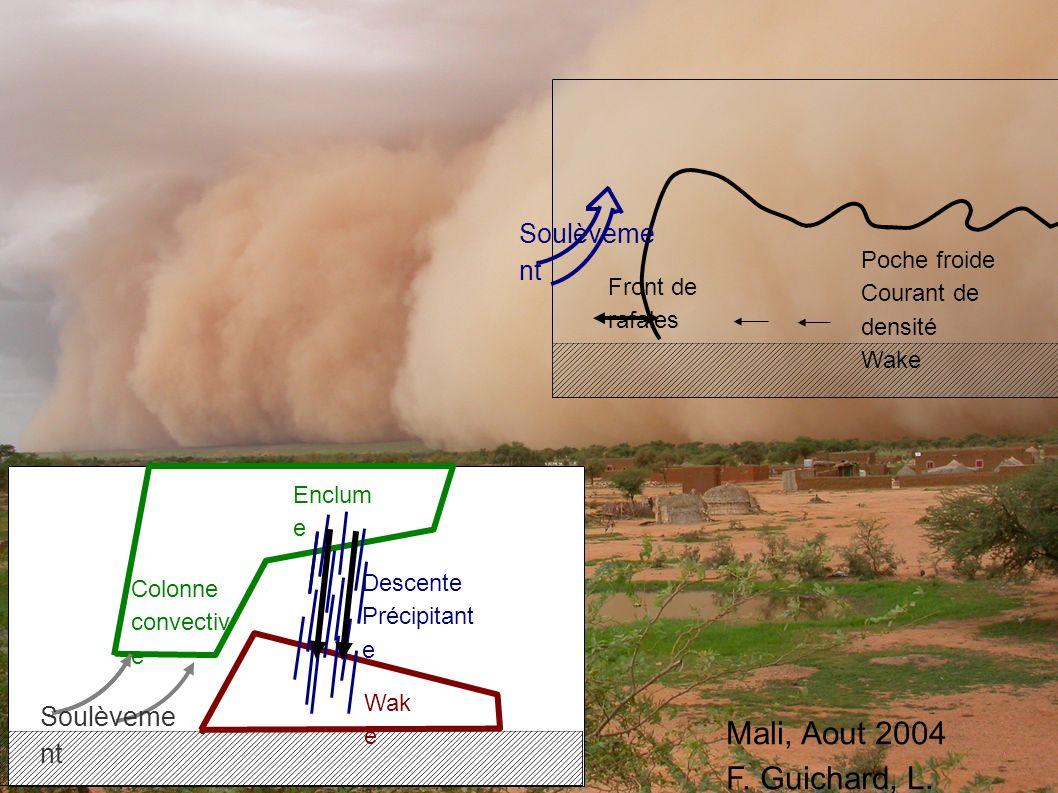 Mali, Aout 2004 F. Guichard, L. Kergoat Poche froide Courant de densité Wake Front de rafales Soulèveme nt Colonne convectiv e Enclum e Wak e Descente
