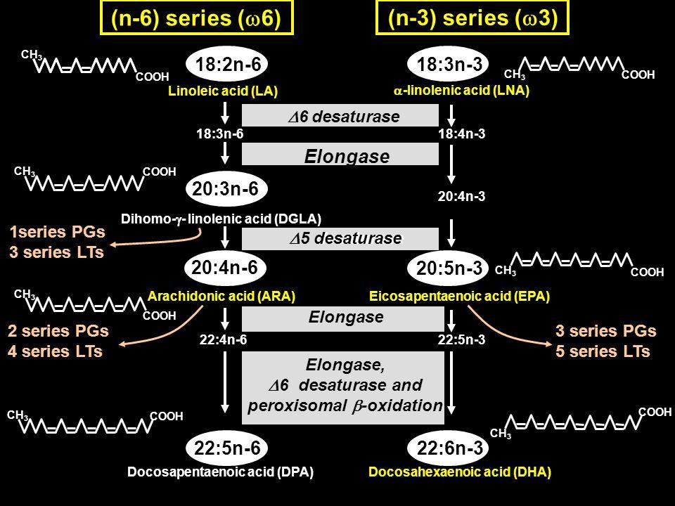 LCFAs Arachidonic acid (ARA) ARA COXs ARA LOXs e-FABP/Mal-1 C/EBP / PGI 2 LIF MATURE ADIPOCYTE IMMATURE ADIPOCYTE C/EBP PPAR /RXR e-FABP/ a-FABP/aP2 TARGET GENES Metabolite(s) TG PPAR /RXR TARGET GENES PREADIPOCYTE Key event IP- R LIF-R ADIPOBLAST PKA ERK Dietary LCFAs Dietary linoleic acid EPA + DHA