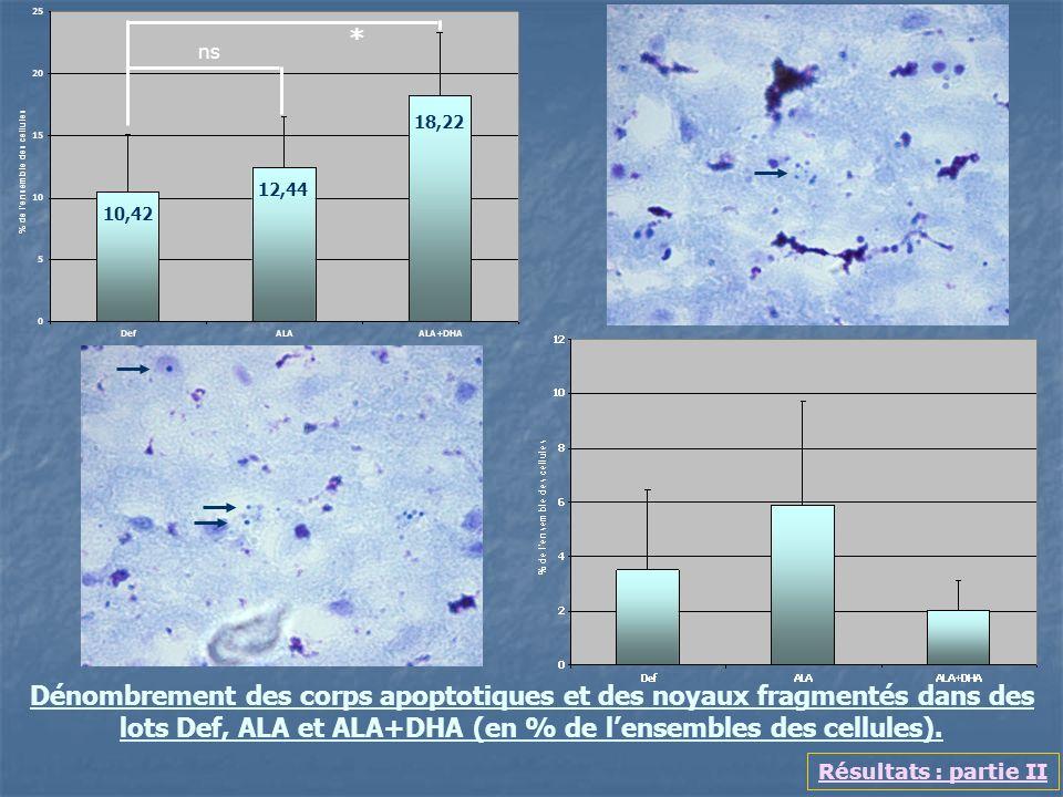 Dénombrement des corps apoptotiques et des noyaux fragmentés dans des lots Def, ALA et ALA+DHA (en % de lensembles des cellules). Résultats : partie I