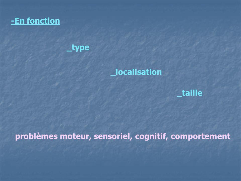 -En fonction _taille _localisation _type problèmes moteur, sensoriel, cognitif, comportement