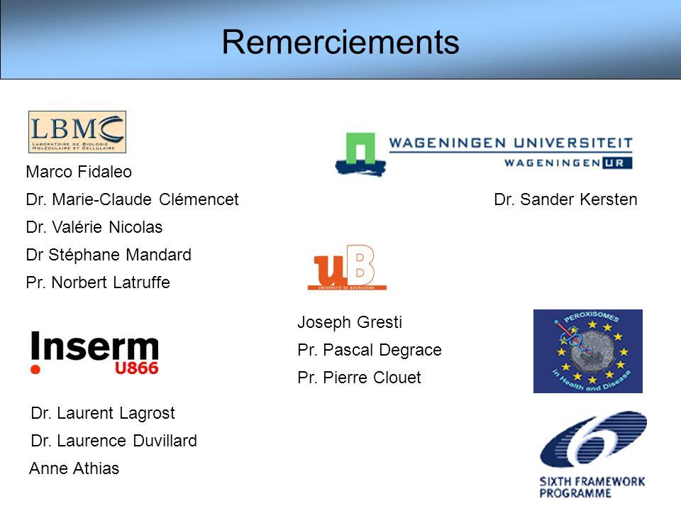 Remerciements Marco Fidaleo Dr. Marie-Claude Clémencet Dr. Valérie Nicolas Dr Stéphane Mandard Pr. Norbert Latruffe Joseph Gresti Pr. Pascal Degrace P