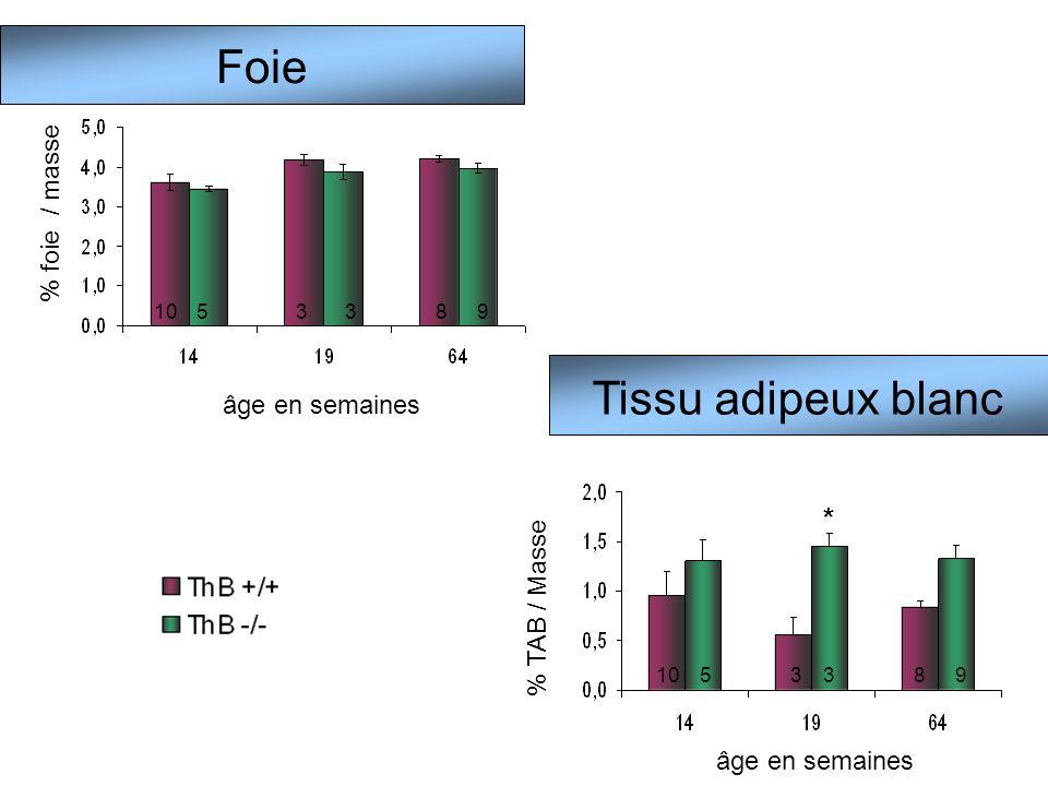 Foie Tissu adipeux blanc % foie / masse âge en semaines 1053389 % TAB / Masse âge en semaines 1053389 *