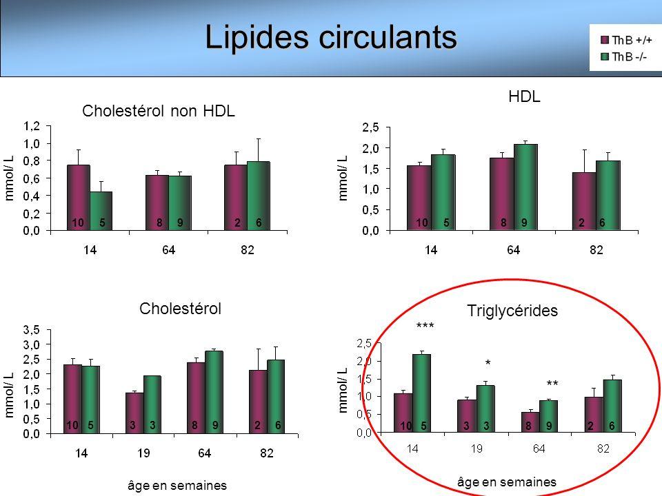 Taux de triglycérides hépatiques (CPG) Stéatose non apparente µg/g foie * 14 âge en semaines 33