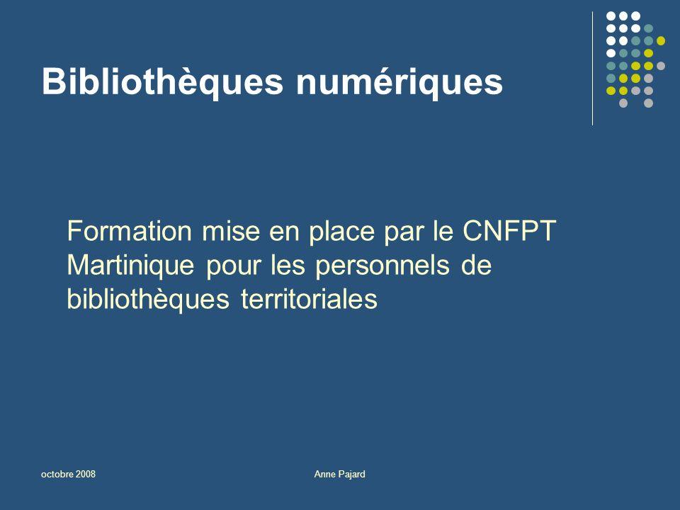 octobre 2008Anne Pajard Bibliothèques numériques Formation mise en place par le CNFPT Martinique pour les personnels de bibliothèques territoriales