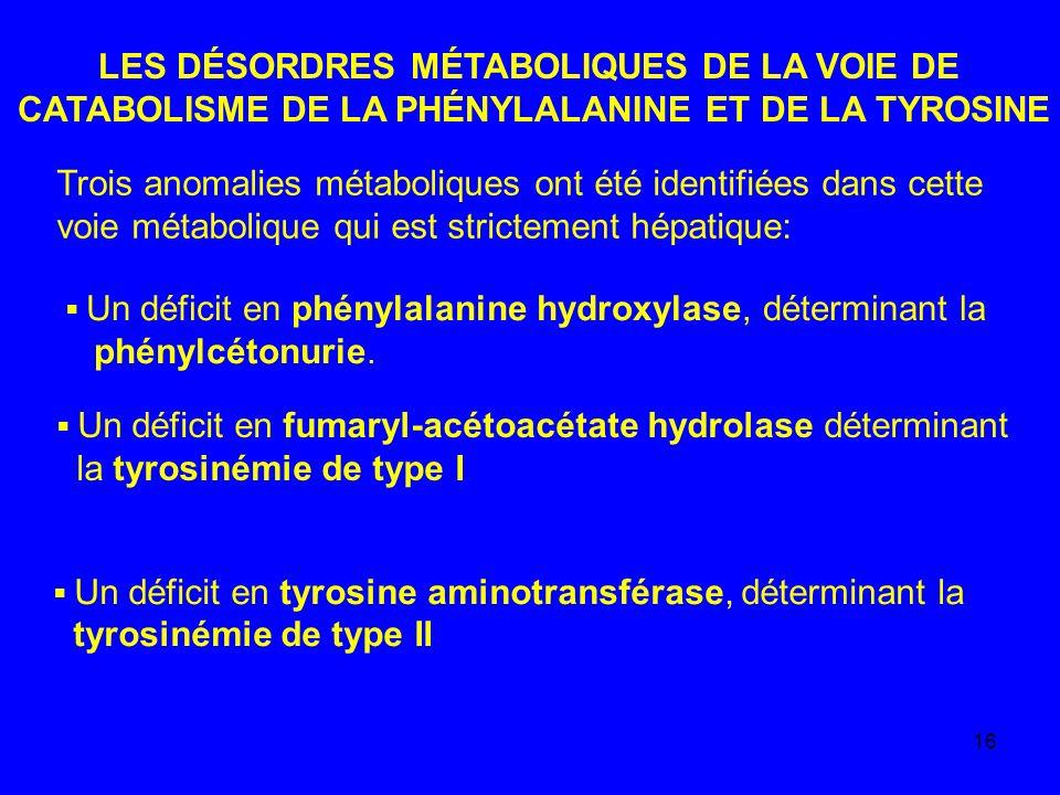 16 LES DÉSORDRES MÉTABOLIQUES DE LA VOIE DE CATABOLISME DE LA PHÉNYLALANINE ET DE LA TYROSINE Trois anomalies métaboliques ont été identifiées dans ce